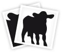 Waxed Calf